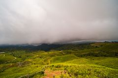 Tea plantation with cloudy skies. Local tea plantation landscape with cloudy skies, at malino highlands, makassar, sulawesi selatan, indonesia Royalty Free Stock Image