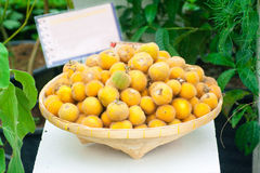 Local Thai fruits. The Local Thai fruits Royalty Free Stock Images