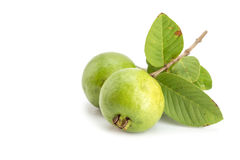 Local Thai green guava Royalty Free Stock Image