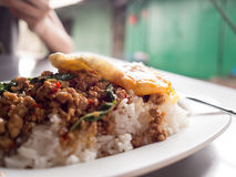 Local Thai rice topped with stir-fried pork basil and fried egg. royalty free stock image