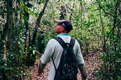 A local tour guide takes tourists for walk in the rain forest near Trinidad, Cuba. royalty free stock image
