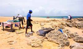 Local tour guides grilling seafood with sandy ocean view in Mozambique. Tour to the sandy Bazaruto island in Bazaruto Archipelago with local people.Mozambique Royalty Free Stock Image