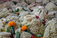 Local traditional Thai style flower offering on temple floor including pile of jasmine garlands made of white jasmine. Crown flower, red rose and yellow Stock Images