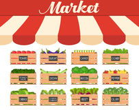 Local vegetable stall. Fresh organic food products shop in a wooden crate. Food market shop. illustration in flat style stock illustration