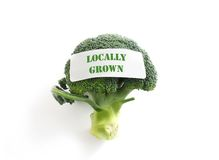 Local veggie Stock Photography