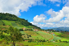 Local view at Mon jam Chiang mai Stock Images