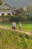 Local village farmers return home Royalty Free Stock Photography