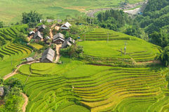 Local Village with Rice Terraces Stock Image
