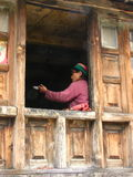 Local Weaver in window in India. A local weaver in the window. Kalpa Town, Himachal, Pradesh, India Stock Photography