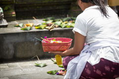 Local woman carrying offering to local temple in Bali Stock Image