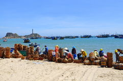 Local women are cleaning their baskets which were used for transporting fishes from the boat to the truck Royalty Free Stock Images
