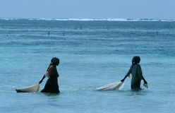 Local women collecting seashells at low tide, Zanzibar Royalty Free Stock Photo