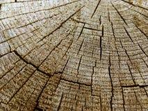 Locali di legno Fotografia Stock