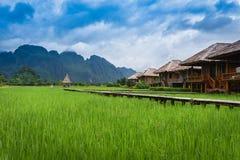 Località di soggiorno con il giacimento del riso Immagini Stock