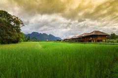 Località di soggiorno con il giacimento del riso Immagine Stock Libera da Diritti