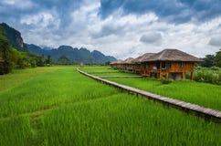 Località di soggiorno con il giacimento del riso Immagine Stock