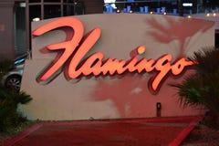 Località di soggiorno del fenicottero, Las Vegas, NV fotografia stock libera da diritti