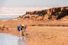 Località di soggiorno del mar Morto, Giordania Fotografia Stock