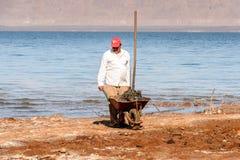 Località di soggiorno del mar Morto, Giordania Immagini Stock