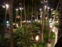 Località di soggiorno di Waikiki alla notte Fotografie Stock