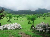 Località di soggiorno di montagna Immagine Stock
