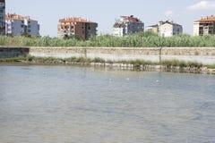 Località di soggiorno di Pomorie in Bulgaria Lago Pomorie fotografie stock