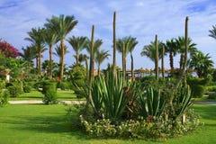 Località di soggiorno tropicale. Fotografie Stock