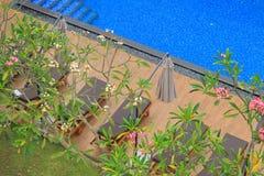 Località di soggiorno tropicale di lusso con la piscina Immagini Stock Libere da Diritti