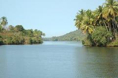 Localización tropical Foto de archivo libre de regalías