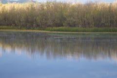 Localizado ao longo do rio do russo, o parque regional do beira-rio está apenas minutos de Windsor e de Healdsburg do centro fotos de stock