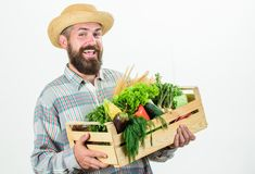 Locally grown foods. Farmer lifestyle professional occupation. Buy local foods. Farmer rustic bearded man hold wooden. Box with homegrown vegetables white stock images
