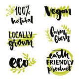 Locally grown label and vegan sign. Earth friendly product, Gmo free sticker design. Farm fresh inscription. Vector 100. Natural badges with hand drawn doodles Royalty Free Stock Photography