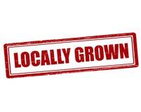 Locally grown Stock Photos