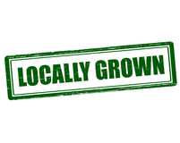 Locally grown Stock Photography