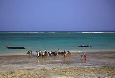Locals buying fish on the beach Royalty Free Stock Photography