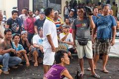 Locals durante pelea de gallos tradicional Fotografía de archivo libre de regalías