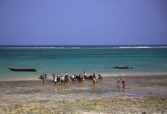 Locals que compram peixes na praia Fotografia de Stock Royalty Free