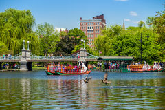Locals and tourists enjoying a ride on the famous swan boats in Royalty Free Stock Image
