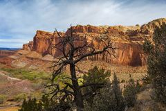 Capitol Reef National Park. Located in south-central Utah, Capitol Reef National Park is a hidden treasure filled with cliffs, canyons, domes and bridges in the stock photo