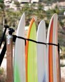 Location de planche de surf Images libres de droits