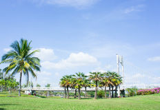 Location in the park , bridge and palms  outdoor in the park Royalty Free Stock Image