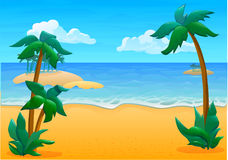 Location summer beach and 3 palm trees stock images
