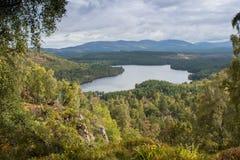 Loch écossais avec des arbres et des montagnes Photographie stock libre de droits
