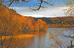 Loch Achilty in Autumn. Scenic view of colorful autumn trees around Loch Achilty in Scotland Stock Photo