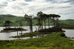 Loch Assynt Stock Photography
