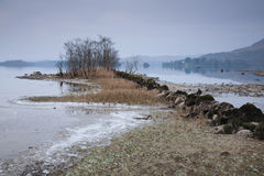 Loch awe shore. Wintery shoreline of Loch Awe in Scotland Royalty Free Stock Image