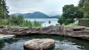 Loch Creran. Loch view from Sea Life Sanctuary Stock Photo