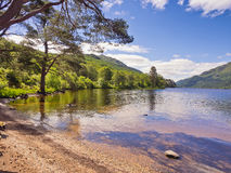 Loch Eck Royalty Free Stock Photos