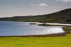 Loch Finlaggan Stock Photos