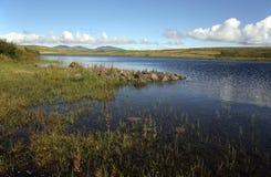 Loch Finlaggan di Islay Fotografia Stock Libera da Diritti
